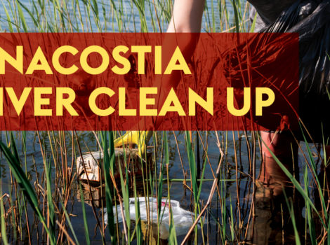 Anacostia River Cleanup Graphic
